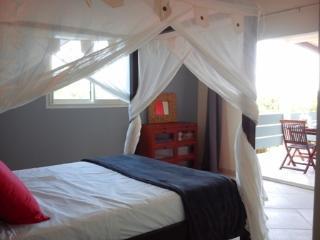 Chambre 16 m2 avec lit Queen Size à baldaquin