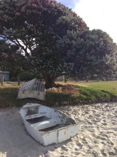 Soft white sand to play in, under a pohutaka tree on Onetangi Beach