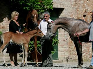 Stefania and Alessandro and our horses