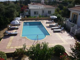 Green Hill Villa No.1