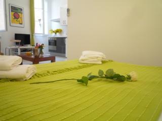 Luxury Vieux Nice studio apartment, sleeps up to 4, Niza