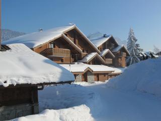 Chalet Les Trappeurs - superb alpine lodging, Les Carroz-d'Araches