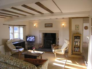 Living room with log burning stove.