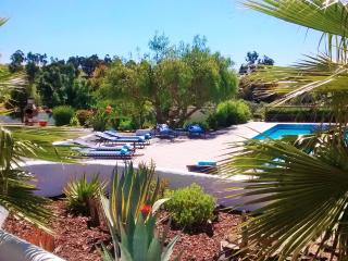 Upper pool terrace with sun loungers, palm trees and amazing views.