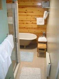 bathroom with a shower and tub