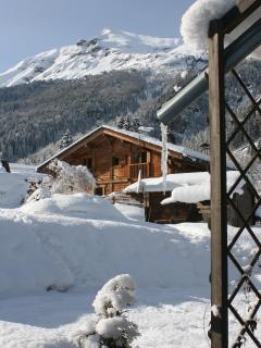 winter views of the garden