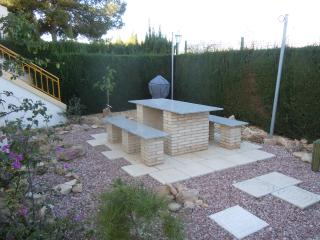 rear garden area and BBQ