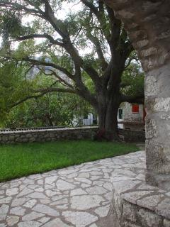 aspect of the garden