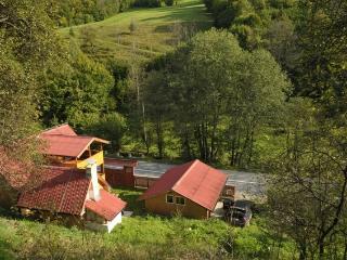 Casa di vacanza a Bucium Cerbu, Alba Iulia