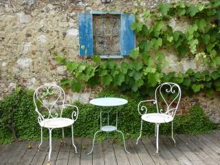 La Maison Bleue, centre vieille ville, belle Terasse et jardinet