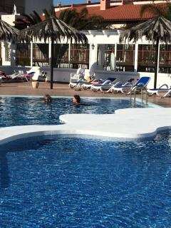 Picture from the other side of the pool, with the lovely new sun loungers