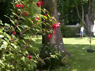 Garden via the fuchsias
