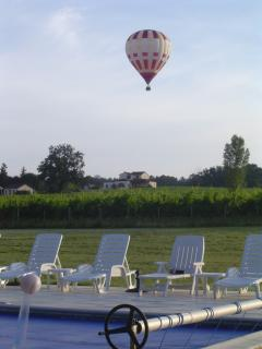 Ballon flight over the vineyard