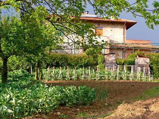 Casa Rondini,organic farm