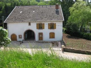 Sapin, Saint Die des Vosges