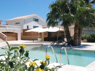 superbe villa avec piscine et spa jatrdin arboré, Hérault