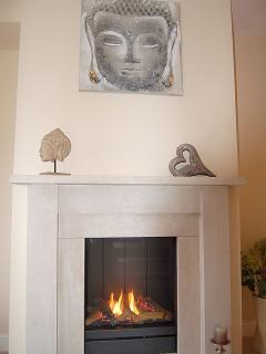 Flame effect gas fire in the lounge