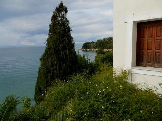Sea  view  from  the  house