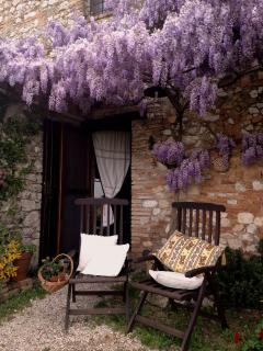 external view, kitchen side, in spring with wisteria