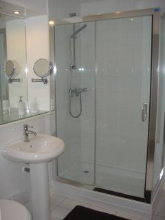 Large Double Shower