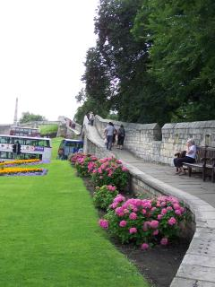 Walk the York Walls