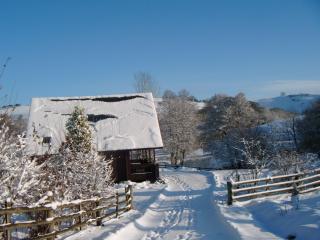 Suran-y-coed lodge in the snow