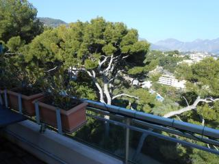 PENTHOUSE RAF NEAR BEACHES AND MONACO, Roquebrune-Cap-Martin