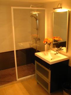 Alegre Vista shower room