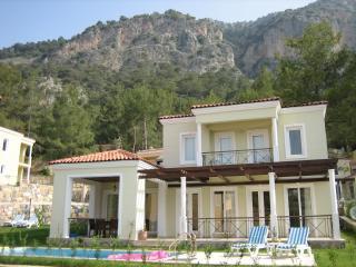 Gocek villa
