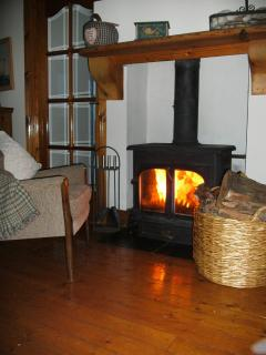 The wood burning stove; there is also central heating.