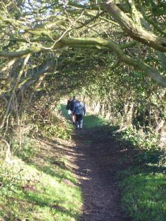Creel path from St Abbs to Coldingham