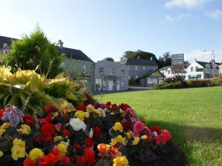 Chaple Island, Strangford