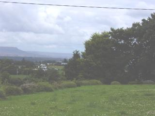 View from front garden