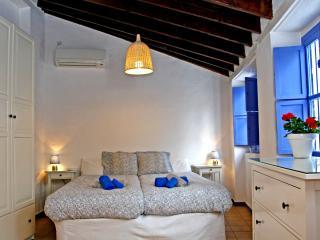 Penthouse down town Seville