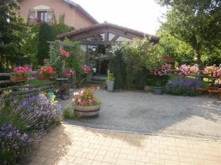 Les Hortensias, Metz