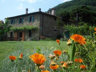 Valpiana, charming Tuscan farm house, in nature, (12 pers. 7 bedrooms)