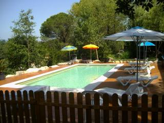 Beautiful villa with a saline pool for 15 guests, Sils
