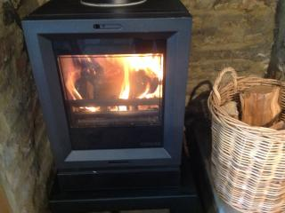 Cosy up with the beautiful contemporary multi fuel stove
