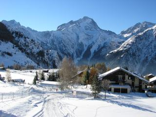 Spacious, Ski in / Ski out, well-equipped apartment - Superb location