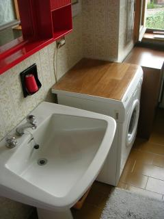 the bathroom (bathtub with shower and washing machine)