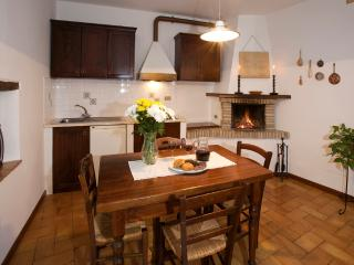 The rustic kitchen-sitting room with a working fireplace.