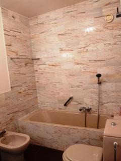 Second bathroom with bathtub with shower fixture