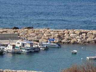 Savas & Eleni Holiday Houses
