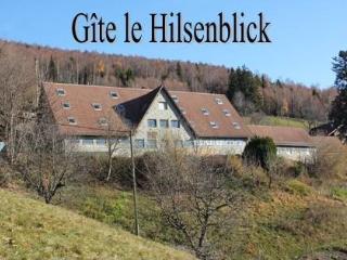Appart avec terrasse Belle vue, Linthal