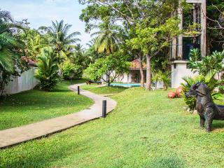 Half an acre of landscaped and totally private garden with tropical plants and trees