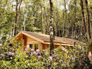 Log Cabin with Private Hot Tub (optional extra) & access to seasonal  pool, Chard
