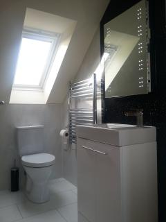 Ballycultra Cottage - Modern bathroom, design panels, towel rail and illuminated mirror