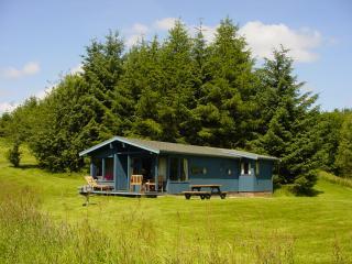 Spruce Lodge + sauna -Fiona, Crieff