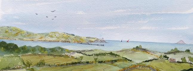 Original watercolour painting a present to us from one of our guests - view from Ballycultra Cottage
