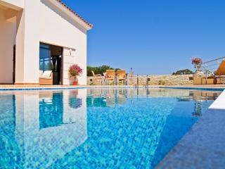 Two Holiday Villas with Pool, Chania Town